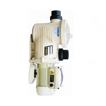 Vickers PV046R1K1KJNMMC+PV046R1L1AYNMM PV 196 pompe à piston