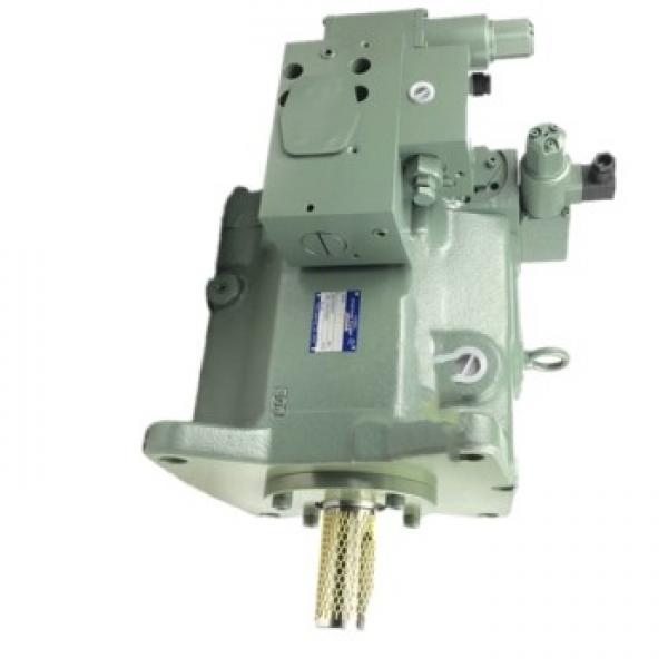 DAIKIN V8A1L-20  V8 pompe à piston #2 image