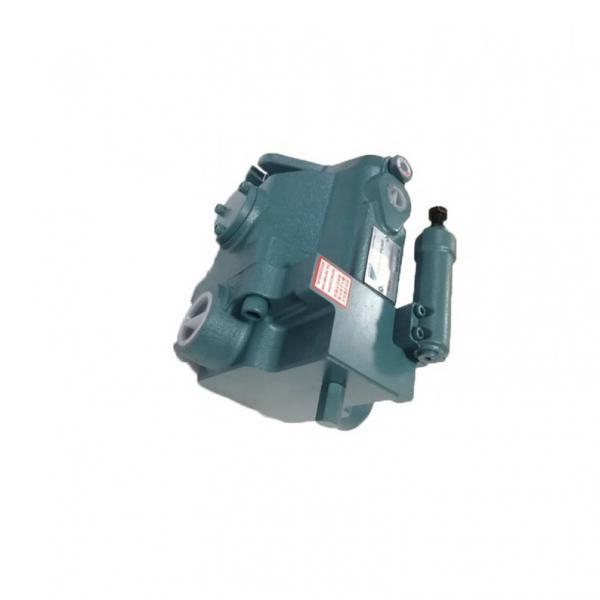 DAIKIN V8A1RX-20 V8 pompe à piston #1 image