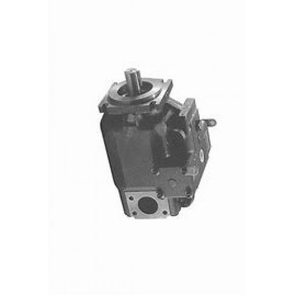 DAIKIN V15A1LX-95 V15 pompe à piston #3 image