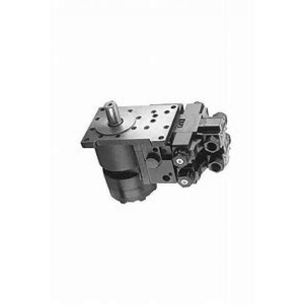 DAIKIN V38D14RNX-95RC V38 pompe à piston #1 image