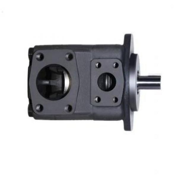 Vickers PV046R1K1AYNHL1+PGP511A0210CA1 PV 196 pompe à piston #1 image