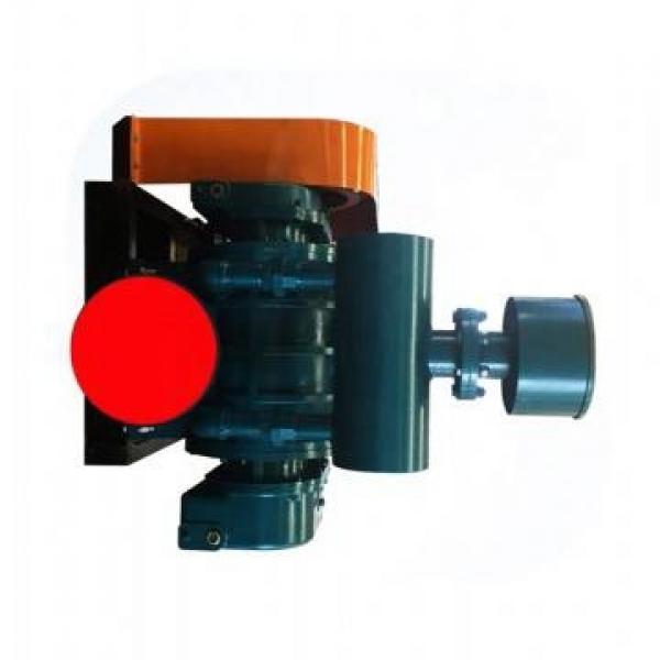 Vickers PV046R1D3T1NMRZ+PVAC2PCSNSJW PV 196 pompe à piston #1 image