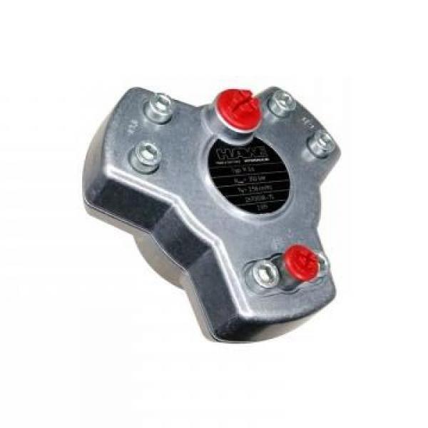 Vickers PV046R1K1KJNMRZ+PV046R1L1JHNMR PV 196 pompe à piston #1 image