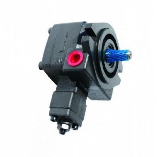 Vickers PV046R1K1BBNKLC+PGP517A0520CD1 PV 196 pompe à piston #3 image