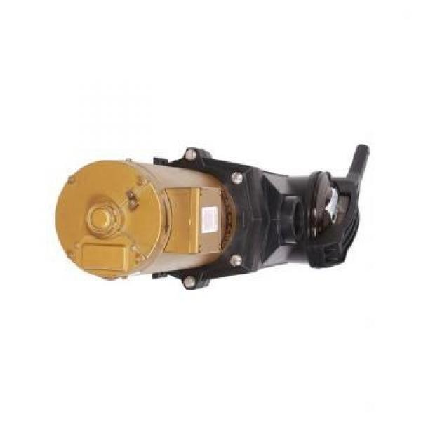 Vickers PV046R1D3CDNMRW+PV046R1E3BCNMR PV 196 pompe à piston #1 image