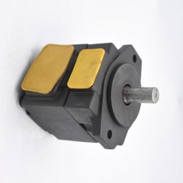 Vickers PV046R1D3CDNMRW+PV046R1E3BCNMR PV 196 pompe à piston #3 image