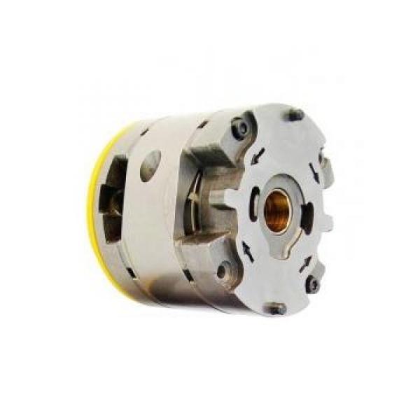 Vickers PV046R1K1T1NMRZ+PVAC2MCMNSJW35 PV 196 pompe à piston #1 image