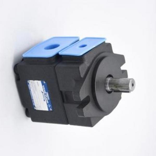 Vickers PV046R1K1AYNUPR+PVAC2PMMNSJW35 PV 196 pompe à piston #1 image