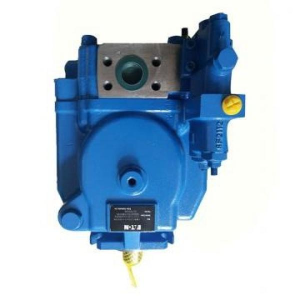 Vickers PV046R1K1BBNKLC+PGP517A0520CD1 PV 196 pompe à piston #2 image